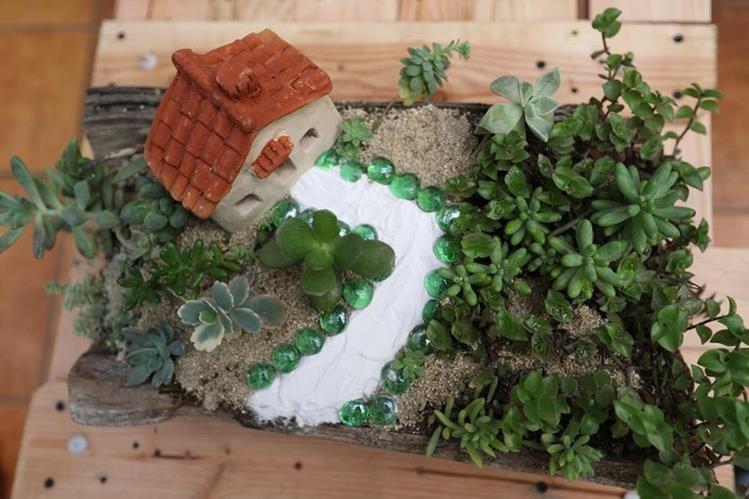 Cmo hacer jardines en miniatura