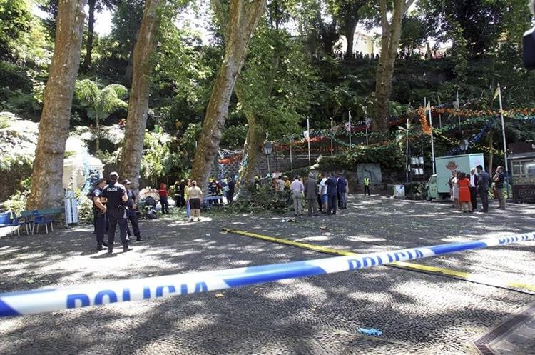 Rescatistas trabajan en el lugar donde 11 personas murieron al ser aplastadas por un árbol.(EFE).
