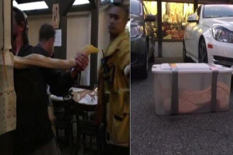 El Servicio de Animales de Los Ángeles y los bomberos lograron capturar a la serpiente.