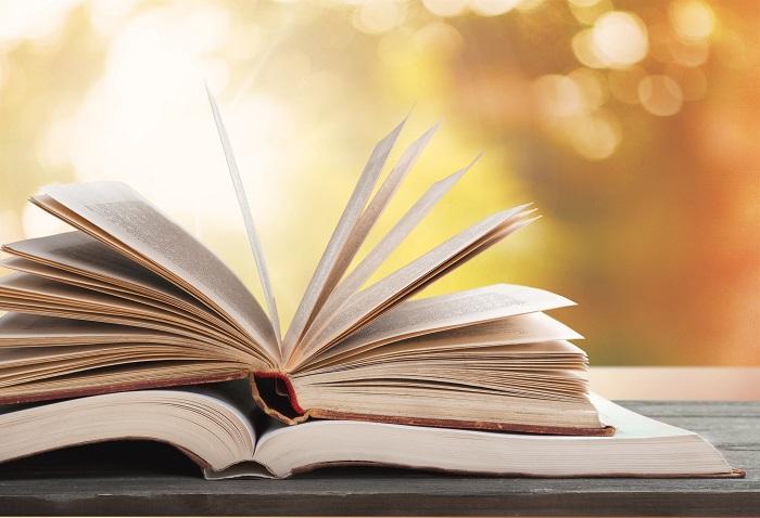 Una buena lectura para endulzar la mente