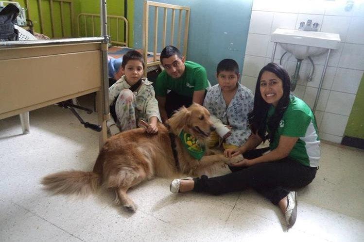 Integrantes de la Asociación Mascotas Terapeutas trabajan con pacientes de los hospitales San Juan de Dios y Roosevelt. (Foto Prensa Libre: Cortesía Mascotas Terapeutas)