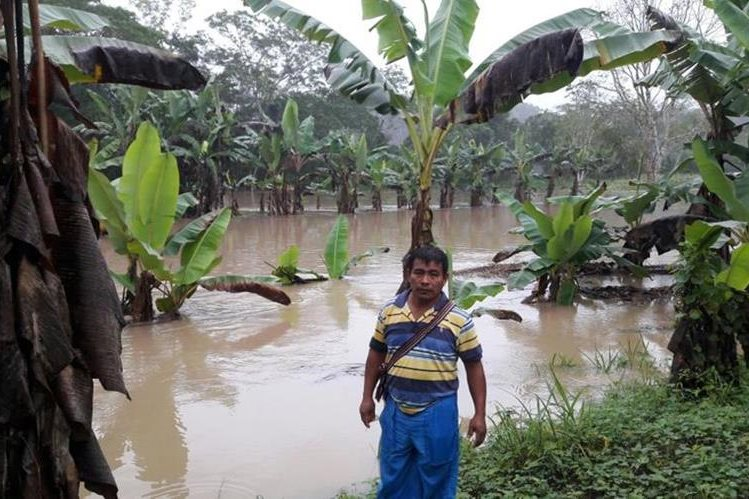 Varias comunidades permanecen inundadas en Morales, Izabal. (Foto Prensa Libre: Dony Stewart)