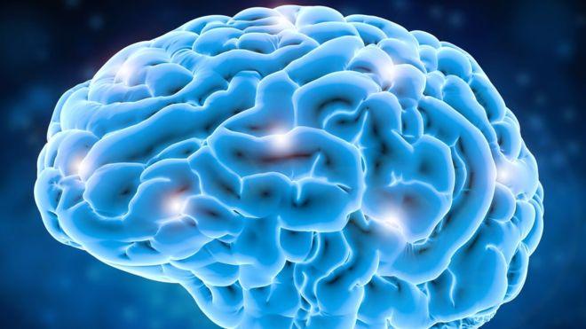 La parte del cerebro relacionada con el lenguaje está en la parte superior (GETTY IMAGES).