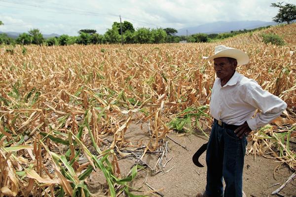 Guatemala se encuentra entre los 10 países vulnerables por el cambio climático y el jueves pasado fue postulado a organizar la COP25 en el 2019. (Foto Prensa Libre: Hemeroteca PL)