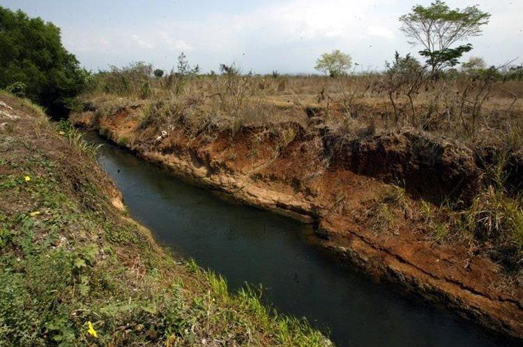 La reserva natural Manchón Guamuchal está en riesgo de ser afectada por la contaminación, según vecinos de Tres Cruces, Retalhuleu. (Foto Hemeroteca PL)