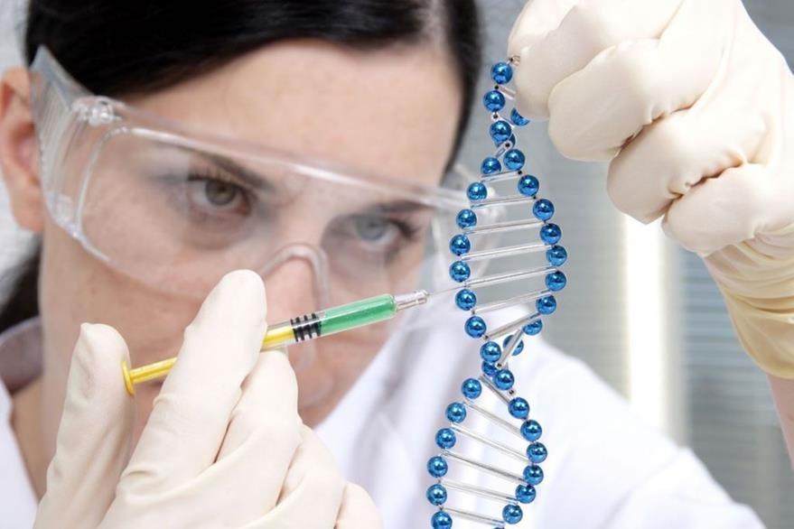 El hallazgo de la enzima G3PP fue publicado en las Actas de la Academia estadounidense de las Ciencias  (PNAS). (Foto Prensa Libre: Hemeroteca PL)