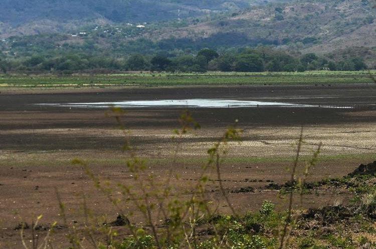 Los charcos que quedan en el lugar, son el único recuerdo que queda de lo que fue la Laguna de Atescatempa, Jutiapa. (Foto Prensa Libre: AFP)