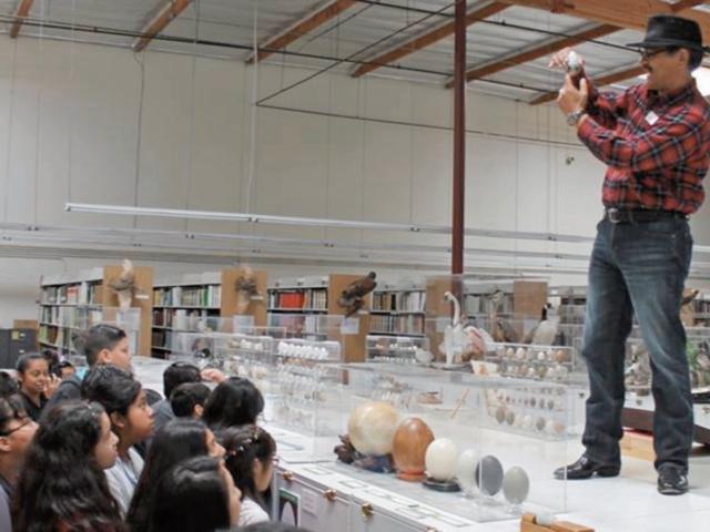 René Corado muestra algunos huevos de la colección del museo.