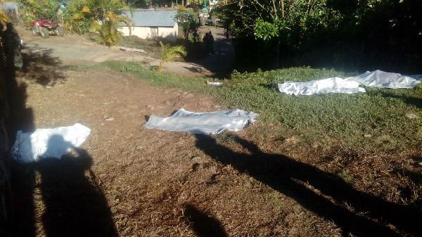 Los cuerpos de siete personas de una misma familia fueron asesinados en Guerrero.(EFE).