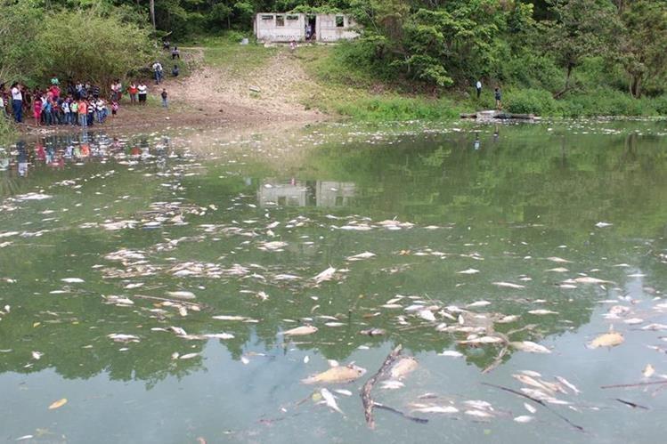 Comunidades que viven de la pesca son los principales afectados por la contaminación. (Foto: Hemeroteca PL)