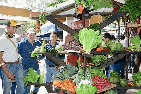 Alumnos de los primeros años del ENCA organizaron feria agropecuaria para poner en práctica los conocimientos adquiridos. (Foto Prensa Libre: Cortesia Maga)