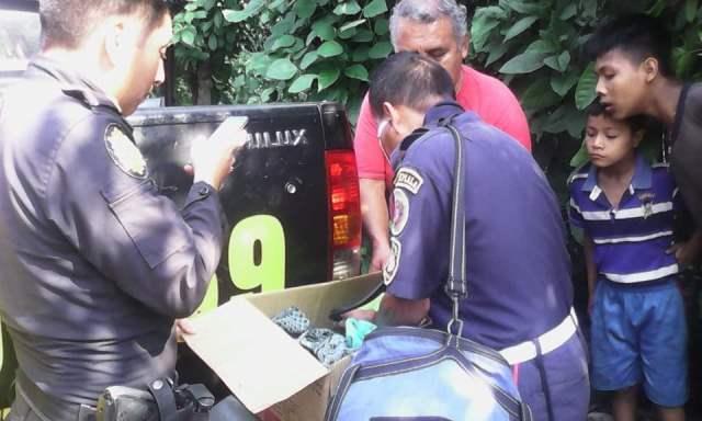 Bomberos, policías y vecinos verifican estado de salud de la bebé abandonada en un cañaveral. (Foto Prensa Libre: Rolando Miranda)