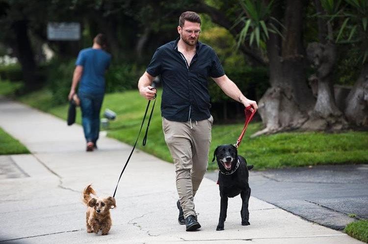 Brett Hartman camina con sus perros Cayley y Brutus. (Foto Prensa Libre: AFP)