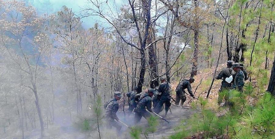 Conred contabiliza, hasta la fecha, 184 fuegos en diferentes regiones de Guatemala. (Foto Prensa Libre: Hemeroteca)