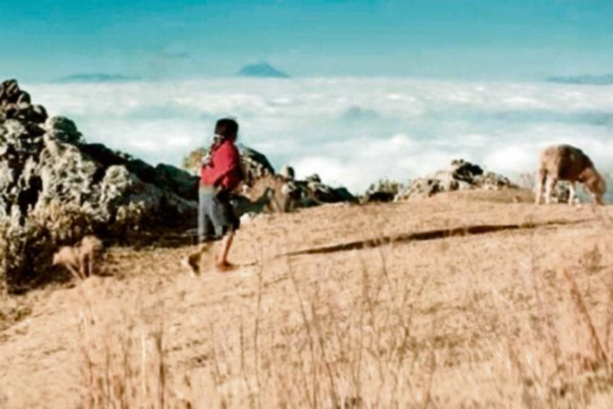 En la   Sierra de los Cuchumatanes, a 3 mil 800 metros —su punto más alto—, se filmó  La casa más grande del mundo.  Cubre   Huehuetenango y  Quiché.  Hay diversidad de fauna y flora.