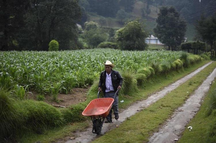 La aldea Los Mendoza en San Juan Ostuncalco, Quetzaltenango, es una comunidad de personas que se dedican, en su mayoría, a la agricultura.