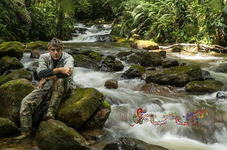 Serpiente emplumada, el documental que promueve al quetzal y la conservación del medio ambiente