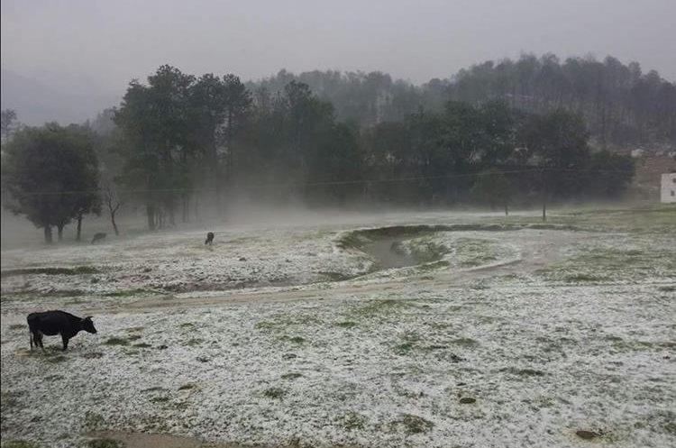 Los verdes montes se vieron cubiertos de hielo.