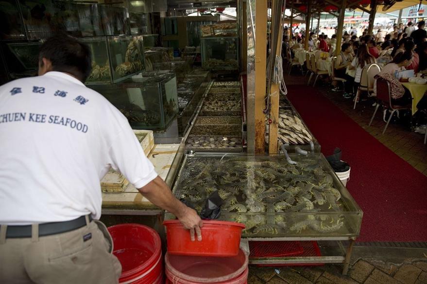 Como la comida debe estar lo más fresca posible, el cliente escoge su pescado mientras está todavía nadando en un acuario. (Foto Prensa Libre: AFP).