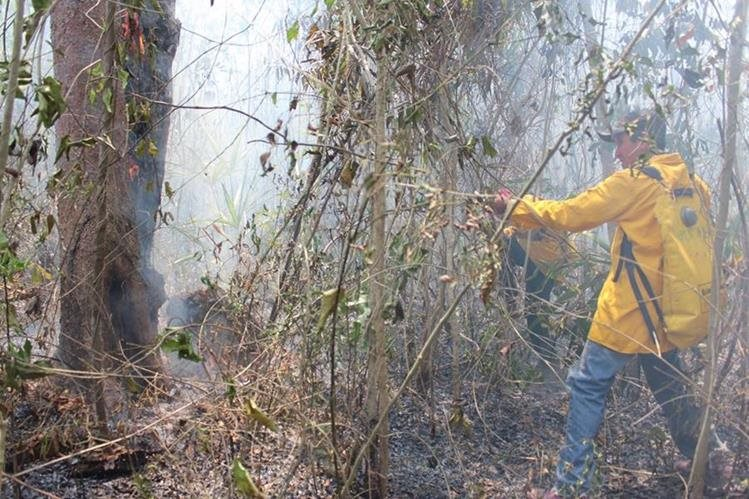 Los incendios forestales han destruido varias hectáreas de bosque en Petén. (Foto Prensa Libre: Rigoberto Escobar).