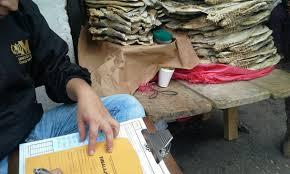 El pez vela es usual que lo vendan en mercados cantonales seco o en fresco. (Foto Prensa Libre: agn.com.gt)