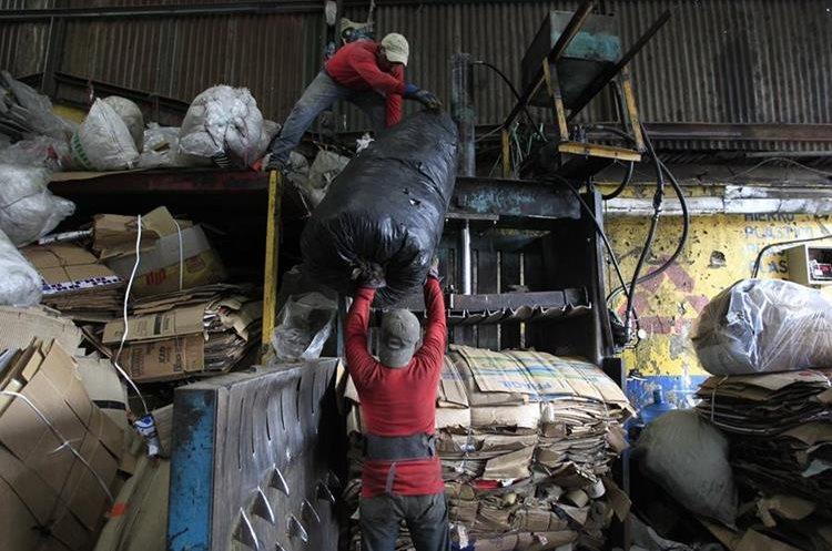 Miles de personas se dedican al reciclaje en Guatemala. (Foto Prensa Libre: Carlos Hernández Ovalle)