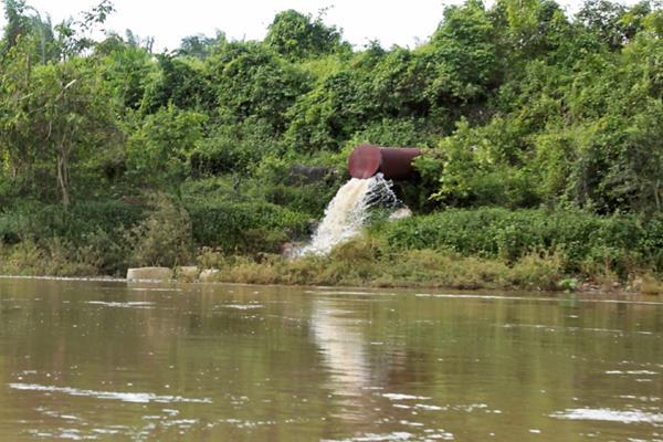 Una tubería de tamaño industrial que sale de los terrenos donde se cultiva palma africana vierte agua gris y verde, con fétido olor, al río La Pasión.