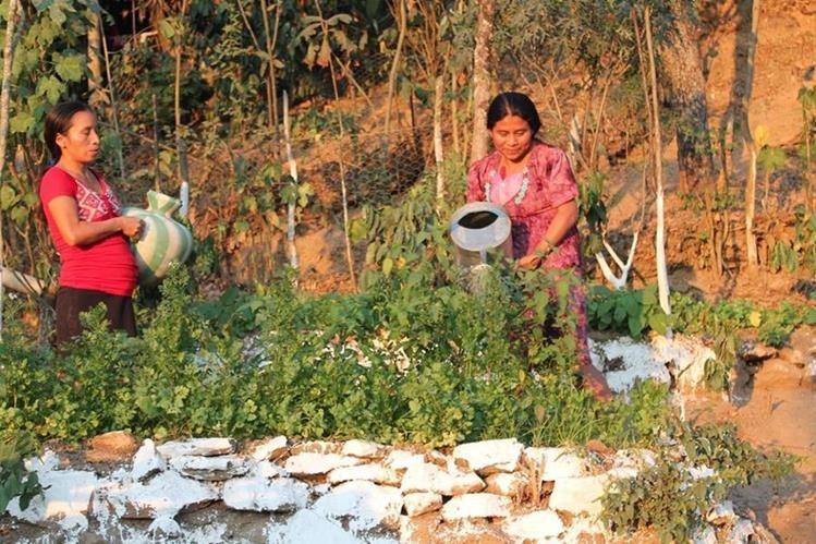 """Mujeres asisten al Cader en Camotán, Chiquimula, donde hace más de una década, la """"lluvia empezó a fallar"""", según pobladores. (Foto EFE/ Pablo L. Orosa)"""