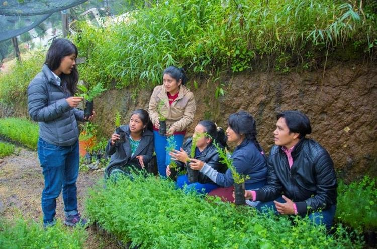 Voluntaria Yukiko Nakanishi imparte educación ambiental en San Andrés Semetabaj, Sololá. (Foto Prensa Libre: Cortesía Jica).