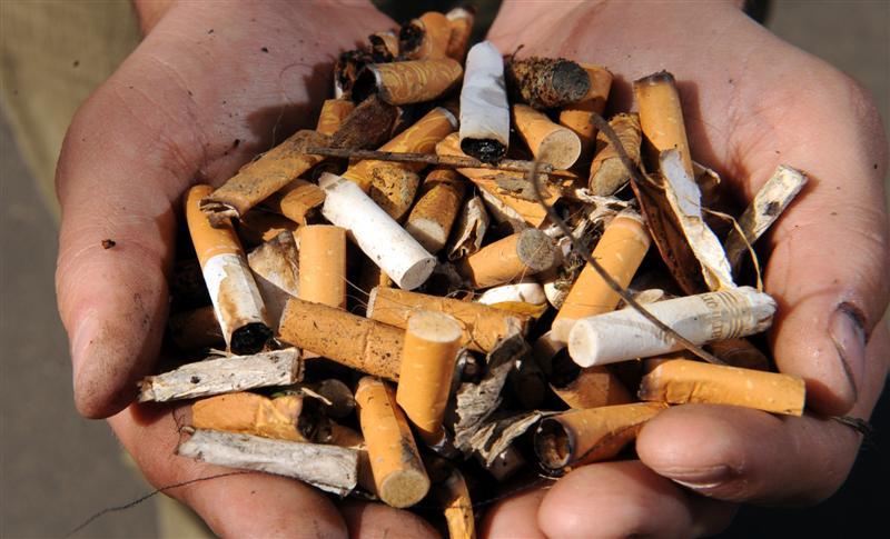 Los desechos del tabaco contienen más de 7 mil químicos tóxicos que envenenan no solo la atmósfera, sino los suelos, mares y los cursos de agua.