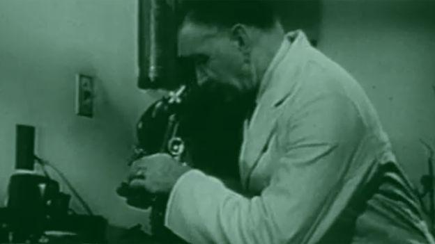Por más que lo intentaba, el doctor Gey no lograba mantener vivas las células de cáncer.