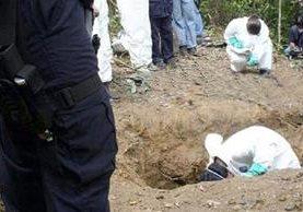 Hallan restos de personas en cuatro fosas clandestinas en municipio mexicano de Xalisco. (Foto Prensa Libre: EFE)