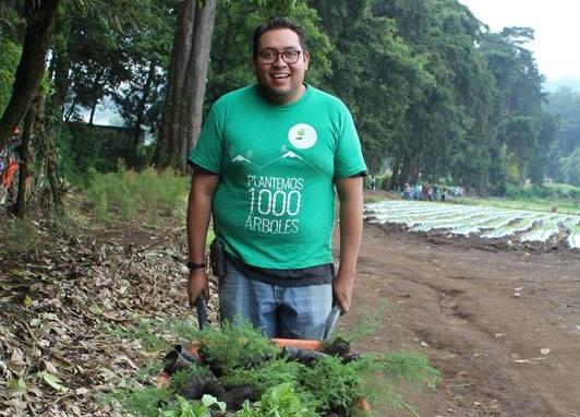 Los árboles son plantados en reservas naturales y parques. (Foto Prensa Libre: Cortesía).