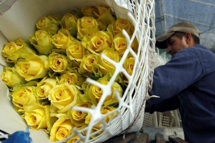 Las flores suelen ser uno de los regalos más frecuentes en San Valentín. (Foto Prensa Libre: EFE).