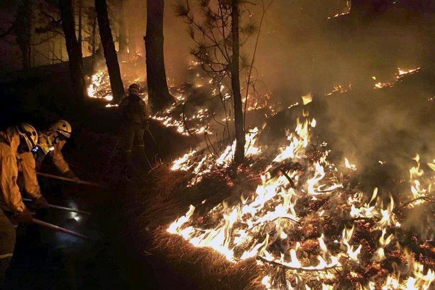 Brigadas luchan contra el incendio de La Palma en los montes del municipio de Mazo. (EFe)