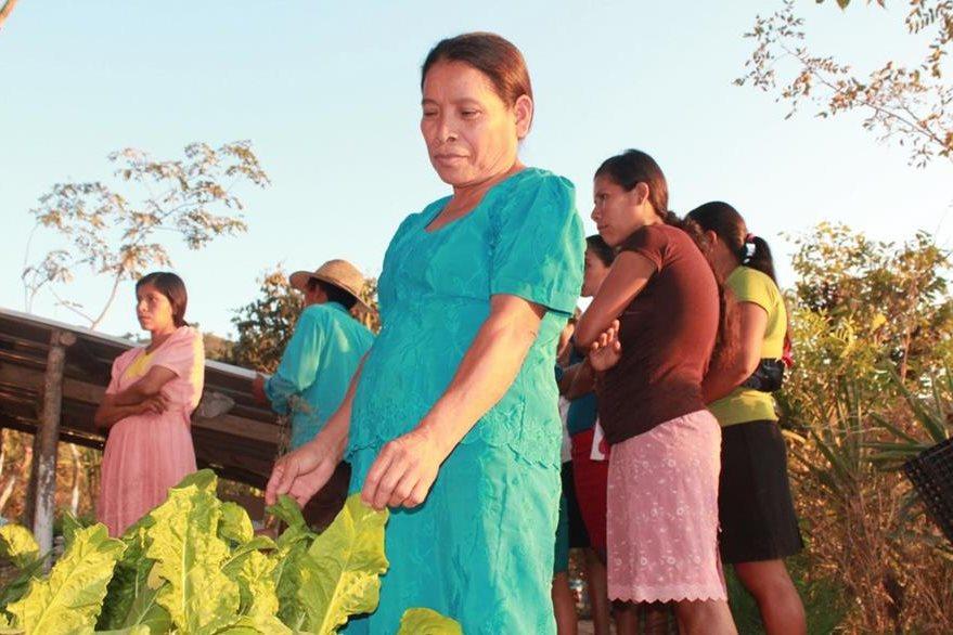 Campesinos de Camotán, Chiquimula, han aprendido a cosechar la lluvia y así combatir la desnutrición. (Foto EFE/ Pablo L. Orosa)