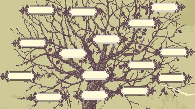 Los autores establecieron árboles genealógicos para conectar a todos los matemáticos en base al vínculo entre asesores académicos y alumnos. THINKSTOCK