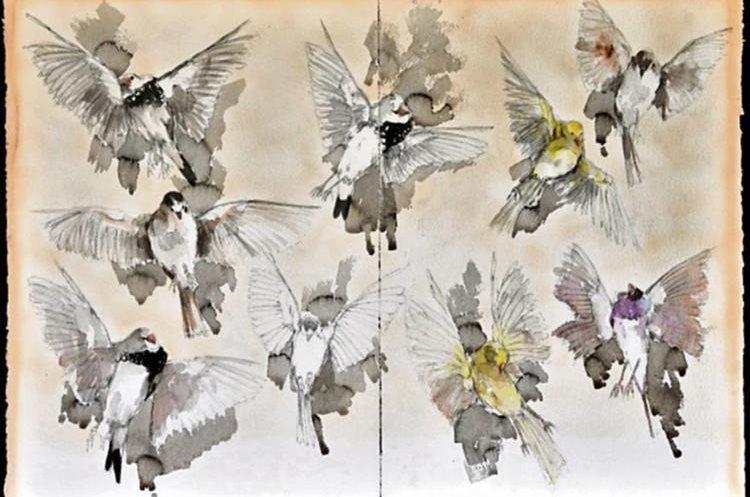 """La obra """"Estudio de pájaros"""" es una de sus obras más representativas (Foto Prensa Libre: cortesía)."""