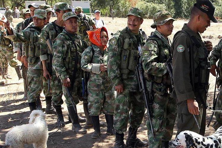 Grupo de guerrilleros hacen fila para consumir bebidas en Pondores, Colombia.(EFE).