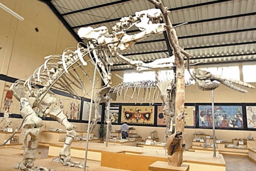 El museo de Paleontología ha sido remodelad. Está a escasos diez minutos de la cabecera.