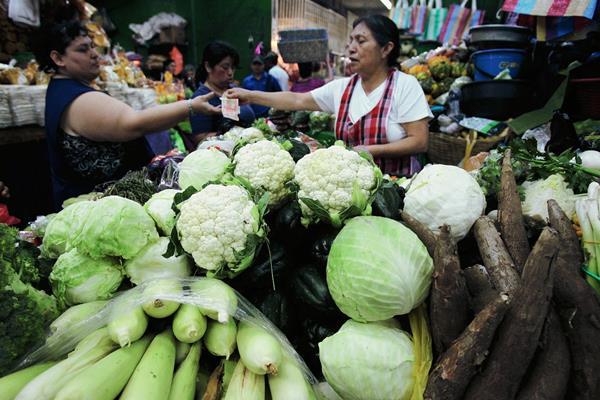 Entre los diferentes cultivos, la variedad de yuca Icta - Izabal  yuca posee mejoran el producto. (Hemeroteca PL).