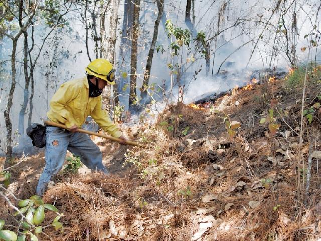 Los incendios forestales en Totonicapán serán atendidos este año solo por cinco personas. (Foto Prensa Libre: Édgar Domínguez)