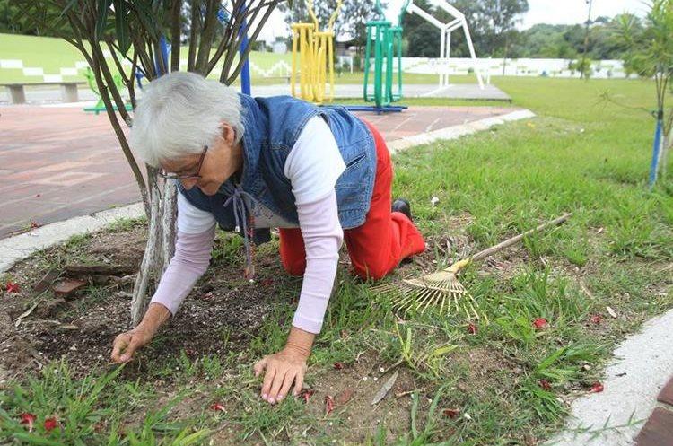 Los jardines son cuidados a diario por Juana Imelda, hay plantas y árboles que son enderazados con guías que coloca Juana Imelda. (Foto Prensa Libre: Edwin Pitán)