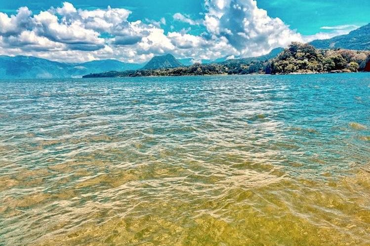 Expertos aseguran que el 40 por ciento de la superficie del Lago de Atitlán está contaminado con cianobacteria. (Foto Prensa Libre: Cortesía Amigos del Lago)