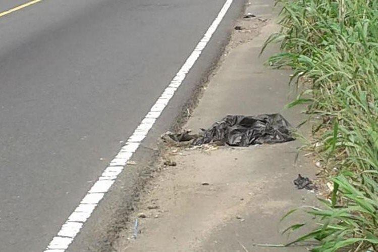 El mono araña fue localizado muerto dentro de una bolsa plástica en el kilómetro 161.5, jurisdicción de Mazatenango, Suchitepéquez. (Foto Prensa Libre: Melvin Popá)