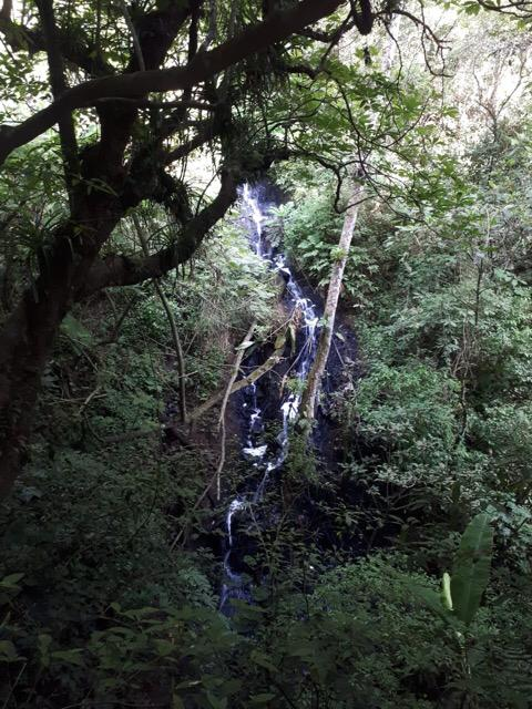 El río que abastece la planta Las Ilusiones está contaminado, por lo que los vecinos están sin agua desde el viernes pasado. (Foto Prensa Libre: Cortesía)