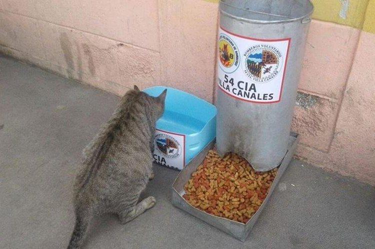 El comedor está disponible para cualquier tipo de animal. (Foto Prensa Libre: Jhon Monsalve)