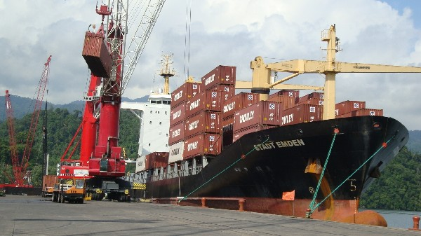 Los trámites de exportación estarán automatizados.