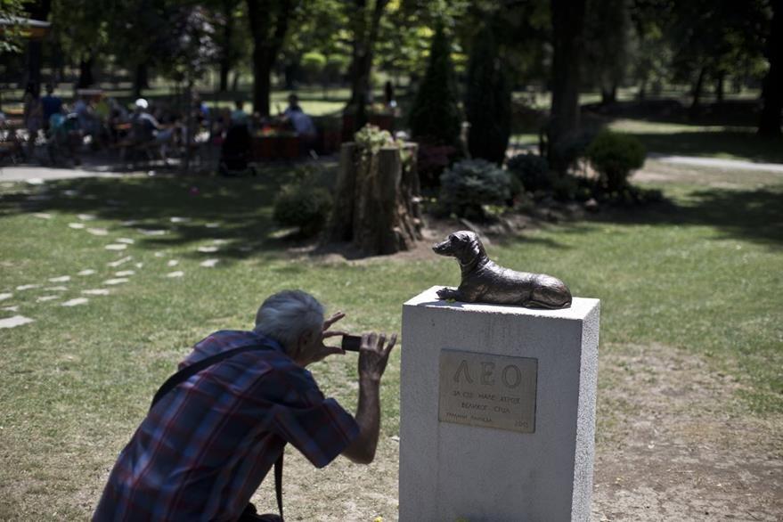 Un hombre toma una fotografía al monumento a Leo, a quien niños y grandes suelen visitar en Pacevo, Serbia. (Foto Prensa Libre: AP).