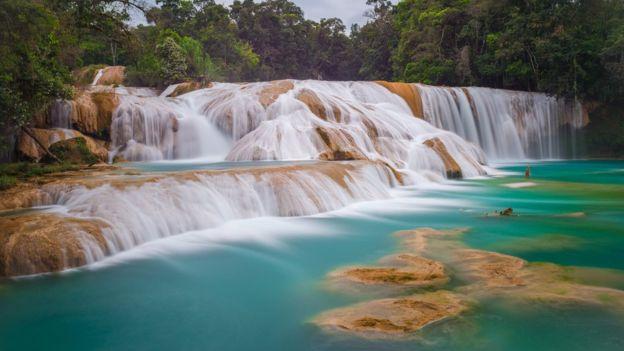 Las cascadas de Agua Azul son uno de los principales atractivos naturales que visitan turistas nacionales y extranjeros en Chiapas. ISTOCK